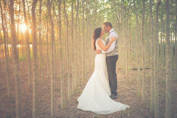Fotógrafo boda valencia ARBOLES PUESTA SOL